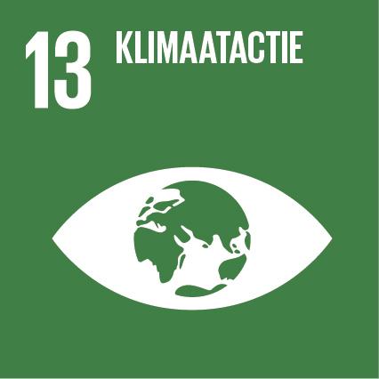SDG 13 Greenledwalls